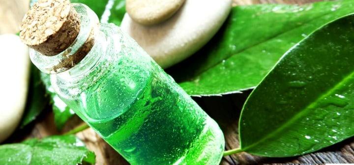 5 remédios naturais para os fungos